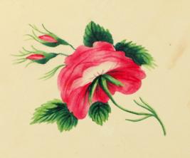 267px-Sarah_Mapps_Douglass_flower_Cassey-album-p-9764-p9_lg_crop